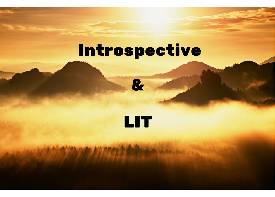 Can You Be Introspective & LIT?!? You bet.